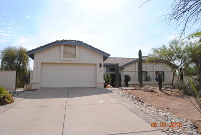 Tucson Single Family Home For Sale: 6392 N Camino Katrina
