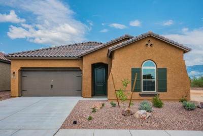 Single Family Home For Sale: 13012 N Spinystar Drive
