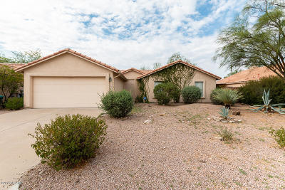 Tucson Single Family Home For Sale: 1340 E Mountain Place