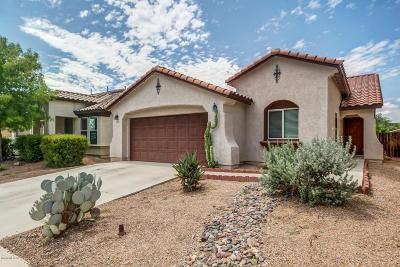 Pima County Single Family Home For Sale: 7026 S Sweetbush Avenue