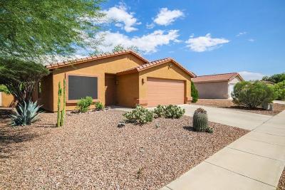 Tucson Single Family Home For Sale: 8102 N Kearny Drive