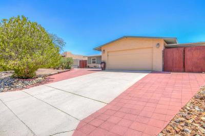 Tucson Single Family Home For Sale: 4081 W Mars Street