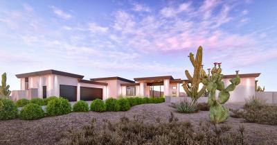 Pima County Single Family Home For Sale: 14340 N Tortolita Estates Drive