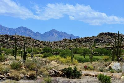 Oro Valley Residential Lots & Land For Sale: 1455 W Tortolita Mountain Circle #278