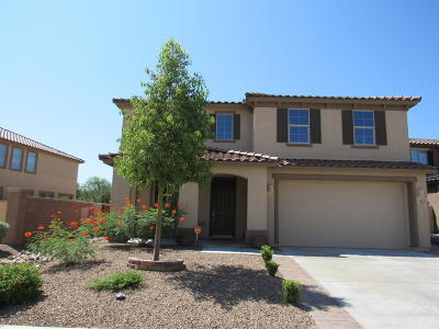 Sahuarita Single Family Home For Sale: 759 W Calle Ocarina
