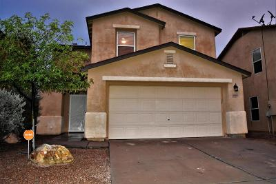 Pima County Single Family Home For Sale: 6950 S Harrier Loop