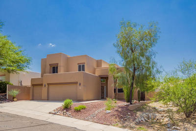 Oro Valley Single Family Home For Sale: 11937 N Labyrinth Drive