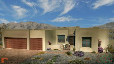 Tucson Single Family Home For Sale: 2650 N Megafauna Court
