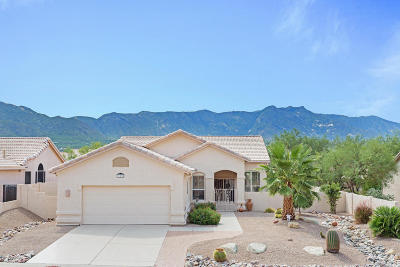 Tucson Single Family Home For Sale: 36215 S Wind Crest Drive