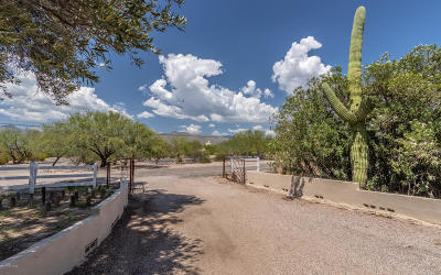 Tucson Single Family Home For Sale: 10224 E Fort Lowell Road