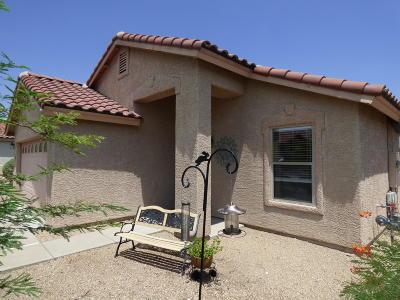 Tucson Single Family Home For Sale: 3440 N Oak Springs Court