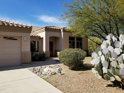 Tucson Single Family Home For Sale: 11229 N Via Rancho Naranjo