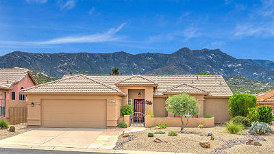 Tucson AZ Single Family Home For Sale: $267,500