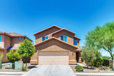 Sahuarita Single Family Home For Sale: 838 W Calle Arroyo Norte