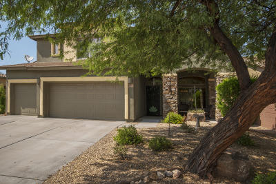 Sahuarita Single Family Home For Sale: 833 E Deer Spring Canyon Place