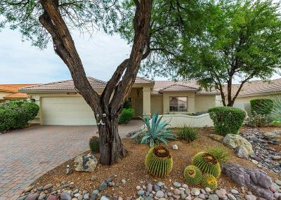 Tucson AZ Single Family Home For Sale: $224,900