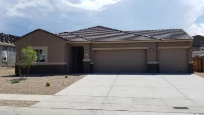 Pima County Single Family Home For Sale: 301 W William Carey Street