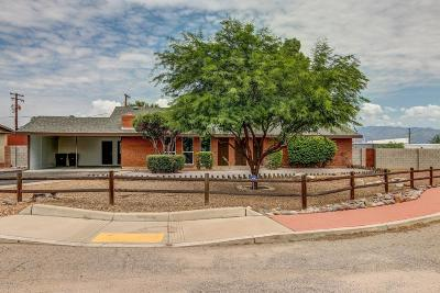Tucson Single Family Home For Sale: 7335 E Placita Sinaloa