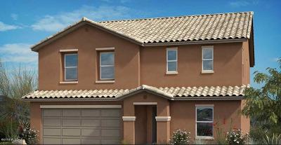 Vail AZ Single Family Home For Sale: $325,585