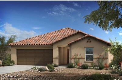 Pima County Single Family Home For Sale: 14209 E Bolster Drive
