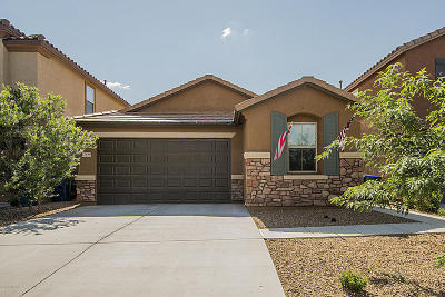 Sahuarita Single Family Home For Sale: 13846 S Camino Acelga