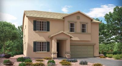 Pima County, Pinal County Single Family Home For Sale: 10798 E Franklin Falls Way E