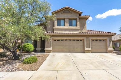 Tucson Single Family Home For Sale: 7980 N Iron Ridge Drive