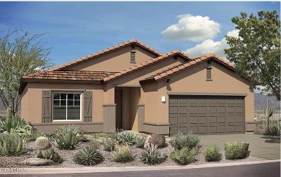Pima County Single Family Home For Sale: 14088 E Via Cerro Del Molino E