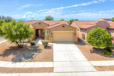 Sahuarita Single Family Home For Sale: 556 E Via Puente Lindo