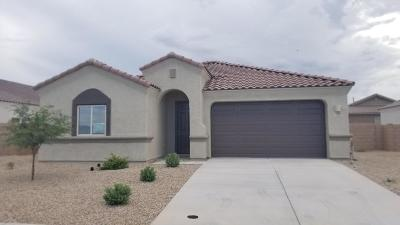 Vail AZ Single Family Home For Sale: $271,055