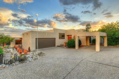 Pima County Single Family Home For Sale: 6843 N Green Mountain Place