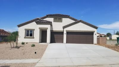 Pima County Single Family Home For Sale: 252 W William Carey Street