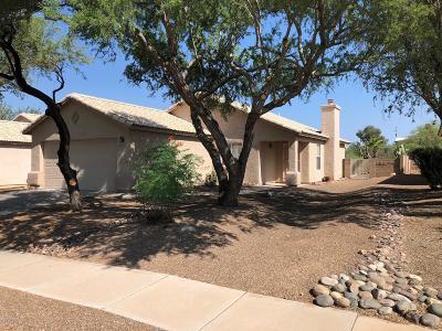 Tucson Single Family Home For Sale: 2084 W Cholla Estate Drive