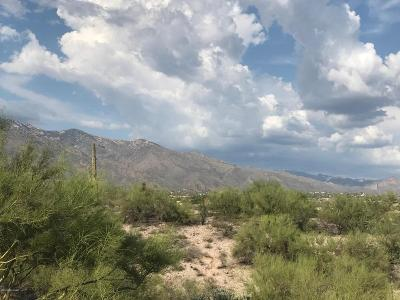 Tucson Residential Lots & Land For Sale: 5300 N Camino Sumo #19