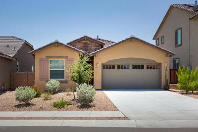 Single Family Home For Sale: 11450 E Desert Raptor Loop