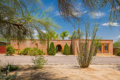 Tucson Single Family Home For Sale: 1901 W Omar Drive