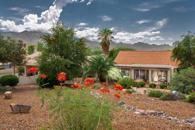 Tucson Single Family Home For Sale: 63860 E Orangewood Lane