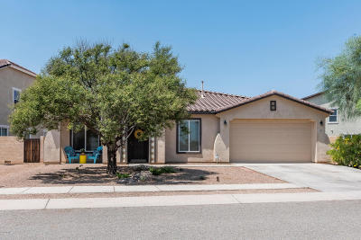 Sahuarita Single Family Home For Sale: 563 W Vuelta Buril Street