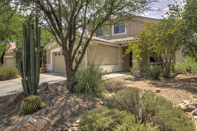 Pima County Single Family Home For Sale: 521 W Corte Planga