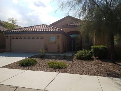 Tucson Single Family Home For Sale: 9164 S Sweet Spring Road