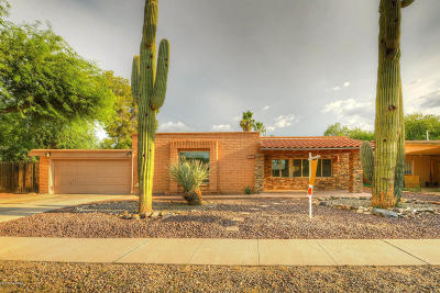 Tucson Single Family Home For Sale: 3629 W Rudolf Drive