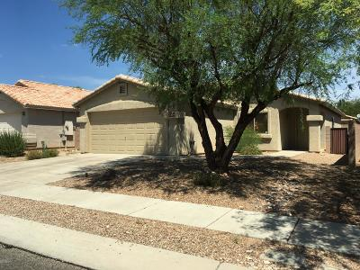 Tucson Single Family Home For Sale: 2358 W Ireton Road
