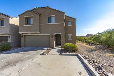 Tucson Single Family Home For Sale: 6014 S Hawks Hollow Court