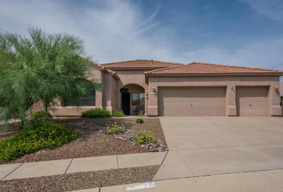 Tucson Single Family Home For Sale: 10846 E Walking Stick Drive