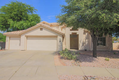 Tucson Single Family Home For Sale: 6860 W Kern Drive