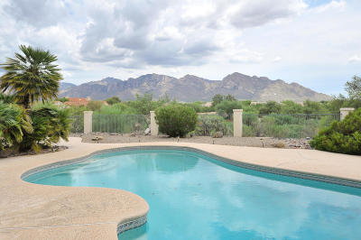 Tucson Single Family Home For Sale: 1585 W Fairway Place