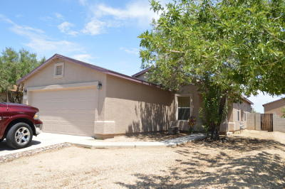Sahuarita Single Family Home For Sale: 18757 S Via Santa Bonita
