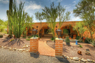 Tucson Single Family Home For Sale: 9860 E Martin Drive