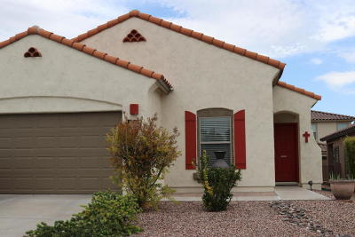 Sahuarita Single Family Home For Sale: 480 W Calle Sombra Linda