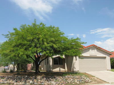 Tucson Single Family Home For Sale: 5120 W Albatross Place
